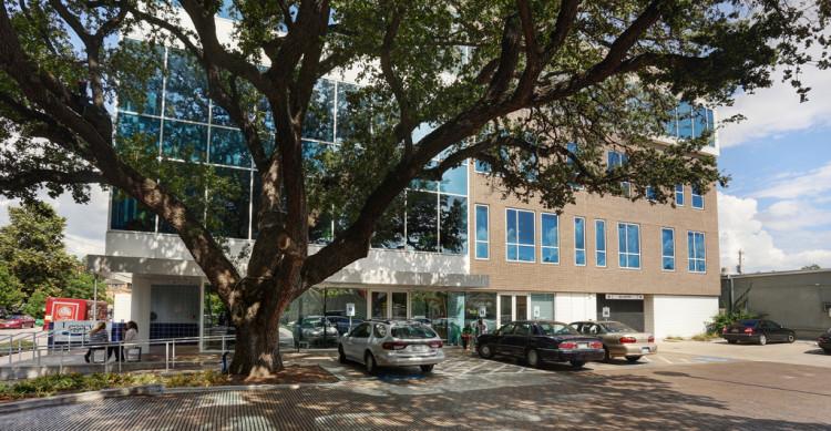 Oak Tree Outside Legacy Community Health Montrose Clinic