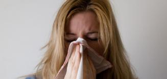 2019 Flu Season